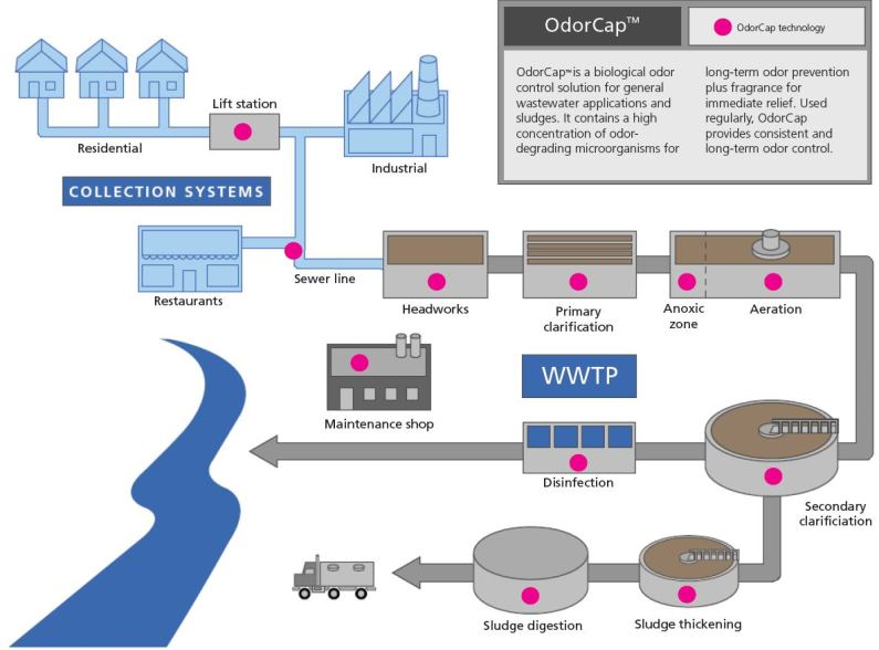 OdorCap is a biological odor control solution for general wastewater applications and sludges. It contains a high concentration of odor-degrading microorganisms for long-term odor prevention plus fragrance for immediate relief. Used regularly, OdorCap provides consistent and long-term odor control.